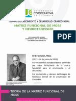 Matriz funcional de moss Crecimiento y desarrollo.pptx
