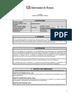 Syllabus Informática Básica