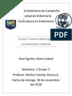 ENSAYO FLORENCE.docx