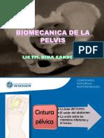 BIOMECANICA DE LA PELVIS. PDF.