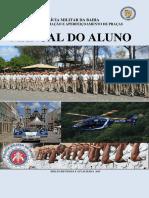 manualdoaluno.pdf