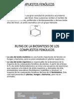 compuestos fenolicos