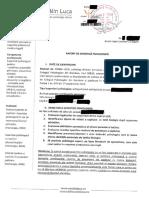 Raport de expertiză psihologică - psih. Luca Cătălin - tată și minor - anonimizat-min (1).pdf
