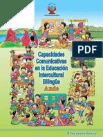 capacidades_comunica_ande.pdf