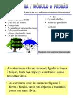 14-estrutura-modulo-padrao
