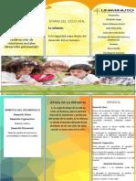 actividad 2 folleto.docx