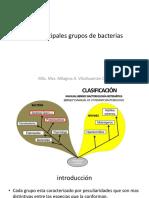 Los Principales Grupos de Bacterias[1]-Convertido