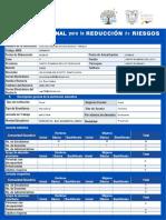001 Pirr_a 2019 Formato Para Lleno El Plan Intitucional de Gestion de Riesgos Institucional