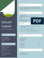 IT Resume Format