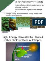 Photosynthesis A
