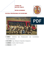 Informe de Camelidos Sudamericanos en CICAS La Raya