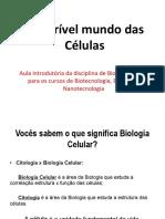Misterios da Celula-05-08-2019.pdf