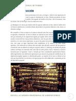 Informe de Vino de Ciruela