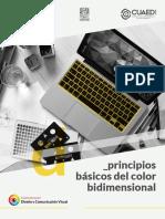 Principios Baasicos Del Color Bidimensional