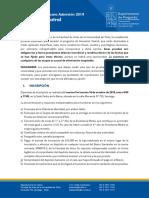 informacion prueba especial 2019 actuacion teatral pdf (8).pdf