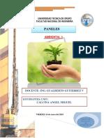 CARATUL A DE AMBIENTALL.docx