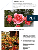 Presentacion_7-Bioelementos.pps