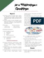 Meteoro - escalas.pdf
