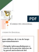 C.inguinal