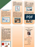 triptico CULTURA PARACAS - copia.docx