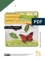Mumuchu Imprimible Safari Ciclo de Vida Mariposa Monarca