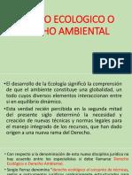 Derecho Ecologico o Derecho Ambiental