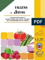 17 Hortalizas y Bayas