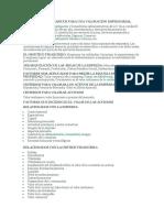 Elementos Basicos Para Una Valoracion Empresarial