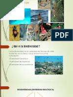 Biodiversidad Conta