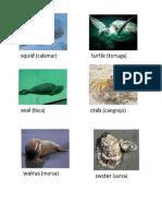 Imagenes de Animales en Ingles y Español