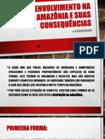 Desenvolvimento Na Amazônia e Suas Consequências