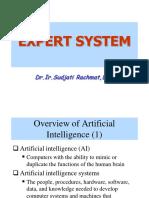 AI - Expert System
