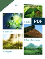 Caracterísitcas Del Medio Ambiente