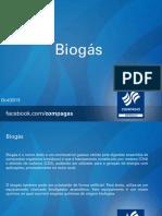 biogasrevisadofinal-131021082350-phpapp01