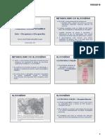 Aula 12 - Glicogênese e Glicogenólise UEPB.pdf