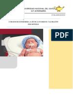Atencion de Enfermeria Del Recien Nacido de Alto Riesgo y de Su Familia