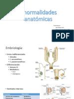 Anomalias Anatomicas