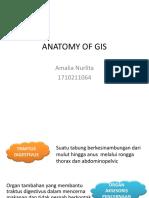 Anatomy of Gis