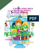 Agenda Pedagogica Sexto