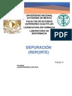 Reporte Depuracion