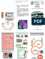 Tríptico - Campylobacter jejuni