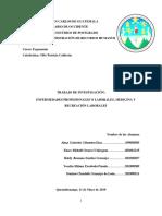 Investigacion Sobre Enfermedades Laborales - FINAL Para Imprimir