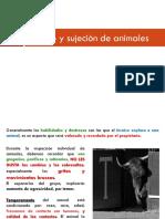 3_Menejo_y_sujecion