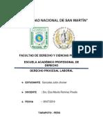 Informe Pl