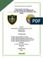 TERRORISMO Y SUBVERSION EN EL PERÚ- trabajo aplicativo.docx