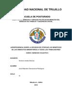 Sindicato Minoritario - Derecho Colectivo Maestria.docx
