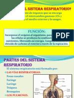 diapositvasdelsistemarespiratorio-jlo-2010-121107190937-phpapp02.pptx