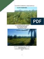 Evaluacion de Impacto Ambiental Unidad Agricola