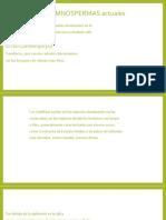 Tipos de GIMNOSPERMAS actuales.pptx