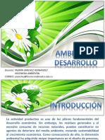 desarrollo y ambiente.pdf